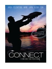 Connect DVD - Just Released!