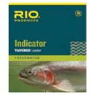 Rio Indicator Leaders